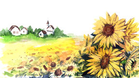 Sunflowers. Painting of field of sunflowers near village Royalty Free Stock Images