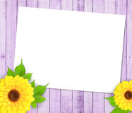 Sunflowers and paper frame. On wood background Stock Photography