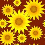 Sunflowers pattern Stock Photos