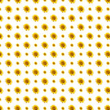 Sunflowers pattern background Stock Photo