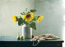 Sunflowers and pears Stock Images