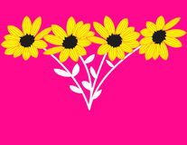 Sunflowers on Pink Background. Four yellow sunflowers on a bright pink background Stock Illustration