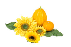 Sunflowers and pumpkins Royalty Free Stock Image