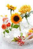 Sunflowers,rose,chrysanthemum and apples Stock Images