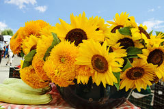 Sunflowers for sale at the farmers market Royalty Free Stock Photography