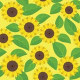 Sunflowers. Seamless pattern with sunflowers - vector illustration Stock Photos