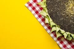 Sunflowers and seeds in bowl on  background. Sunflowers and seeds in bowl on yellow background Stock Photo