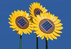 Sunflowers with solar cells Stock Photography