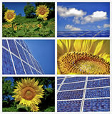 Sunflowers and solar panels collage Stock Photo