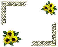 Sunflowers Spring border Royalty Free Stock Image