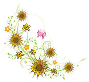 Sunflowers, summer Royalty Free Stock Photography