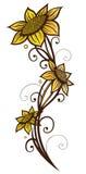 Sunflowers, summer Stock Photos