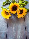 Sunflowers on table Stock Photography