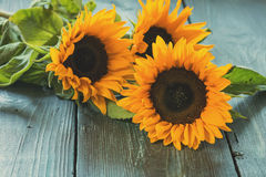 Sunflowers on table Royalty Free Stock Photography