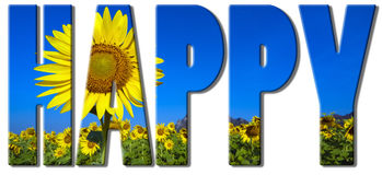 Sunflowers text - happy. Happy text filled with an image of sunflowers field Stock Photography
