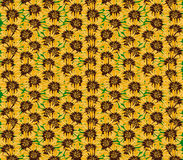 Sunflowers texture. Graphic art desing background. Royalty Free Stock Photography