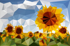 Sunflowers triangular Royalty Free Stock Photos