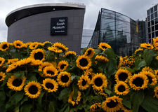 Sunflowers and Van Gogh museum stock photos