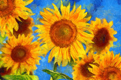 Sunflowers.Van Gogh style imitation royalty free stock photo