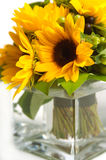 Sunflowers in Vase. An arrangement of sunflowers in a glass vase Royalty Free Stock Images