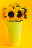 Sunflowers in vase Stock Images