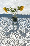 Sunflowers in vase Royalty Free Stock Photography