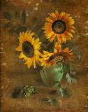 Sunflowers in a vase, a still-life. Royalty Free Stock Photos