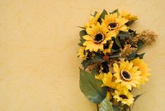 Sunflowers w/ Space for Text Royalty Free Stock Photography