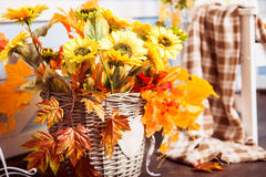 Sunflowers in the wicker basket decorated with yellow leaves. Horizontal Stock Images