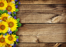Sunflowers and wild flowers border on wood. En background stock photos
