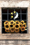 Sunflowers in window, Italy Stock Photography