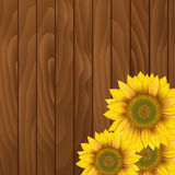 Sunflowers on wooden background. Sunflowers on a wooden background Stock Photo