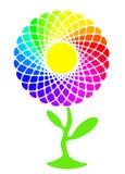 Sunfower. Rainbow sunflower full of colors, eco background Stock Image