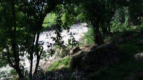 Sungai lizenzfreie stockfotografie