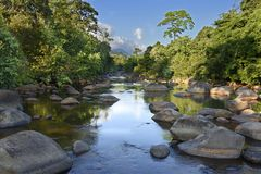Sungai besar lembahkahung, södra kalimantan royaltyfri bild