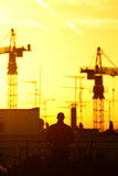 Sungazing. Watching the sun rise between the cranes Royalty Free Stock Image
