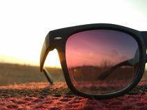 Sunglass在阳光下 库存图片