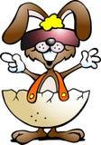 与冷静sunglass的滑稽的兔子 免版税库存照片