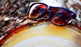 Sunglass on top a Part of Tree Stock Photograph. The sports sunglass kept on top of a part of big size yellowish tree parts unique stock photograph Stock Images