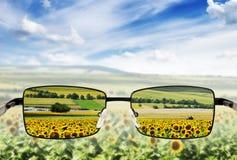 Sunglasses. Stock Photos