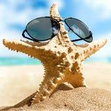 sunglasses Photo libre de droits