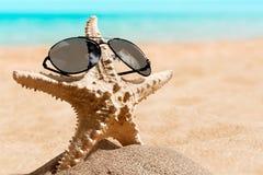 sunglasses Immagine Stock