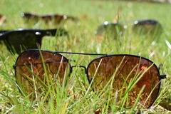 sunglasses Photographie stock