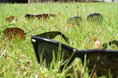 sunglasses Image libre de droits
