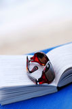 Sunglasses and book on beach chair Stock Photo