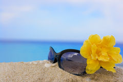 Sunglasses and flower Stock Photos
