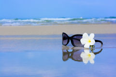 Sunglasses and flower Royalty Free Stock Photos