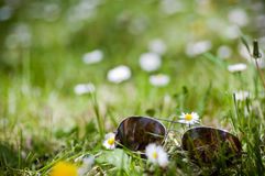 Sunglasses in grass Stock Photos