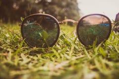 Sunglasses on grass