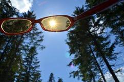 Sunglasses look sharp Royalty Free Stock Photography